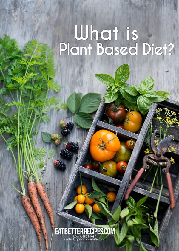 What is Plant Based Diet? Recipes for Plant Based Diet | EatBetterRecipes.com